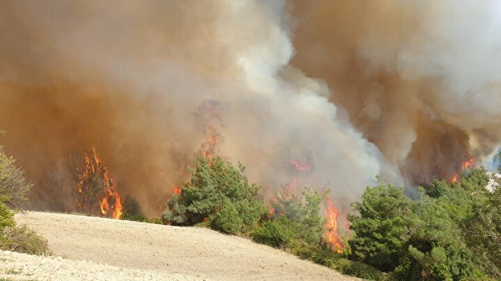 Rüzgarın da etkisiyle çevredeki evlere ulaşan yangın, bazı evlerin ahır olarak kullanılan kısımlarına sıçradı.