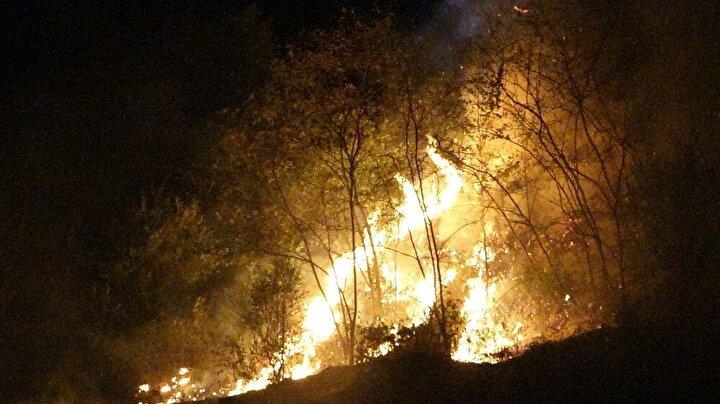 Trabzon'un Akyazı mahallesinde örtü yangını