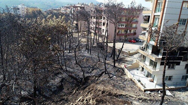 Öte yandan drone ile görüntülenen alanda ağaçların evlere 2-3 metre uzaklıkta olduğu ve bütün ağaçların yandığı görüldü.