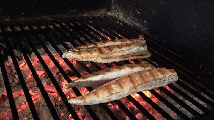 """Palamutun pişirme teknikleri hakkında bilgi veren Bayram, """"Balığı pişirirken normalde tel ızgaralar kullanılır. Bu eskiden beri süre gelen bir durumdur. Balık ve köfte ızgaralar dediğimiz sade ızgaralar vardır. Daha çok maşa ile çevrildiği zaman hem balık ezilmez hem de dağılmaz. Bir de balığın marine durumu vardır. Balığı sabahtan ayıkladığınızda belli aromalarda belli yağlarda marine edebilirsiniz. Bu durum hem balığın yapışmamasını hem de, çok daha farklı lezzet bırakmasına sebep olur. Şu an palamut çok tüketiliyor ancak; yine de bir kere yediğinizde belki de bir hafta sonra yemek isteyeceksiniz .Her gün istemezsiniz çünkü; biraz ağır bir balıktır. Etli balık olduğu için insanı sıkar, boğar. Onun için belli aromalarda, marine edildiğinde çok farklı lezzetlerle her gün tüketilebileceğine inanıyorum diye konuştu."""