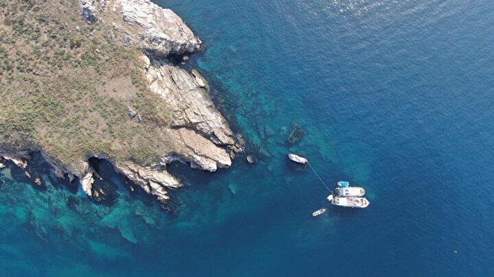 ADYSK Başkanı Volkan Narcı ve ekibi aynı gün içinde mercanların olduğu bölgeye dalıyor, oradan aldıkları parçaları aşağıda içi Akdeniz suyu dolu kavanozlara koyarak kapatıyor. Bu noktada sıcaklık 15 derece. Kavanozlar, dalgıçlar tarafından tekneye çıkarılarak burada 15 derecelik ısıyı korumak için özel dolaplara konuluyor. Dalgıçlar 1.5 saat uzaklıktaki Tavşan Adasına yola çıkarak burada tekrar aşağıya iniyorlar. Özel bir macunla mercan parçaları kavanozlardan çıkarılarak zemine sabitleniyor.