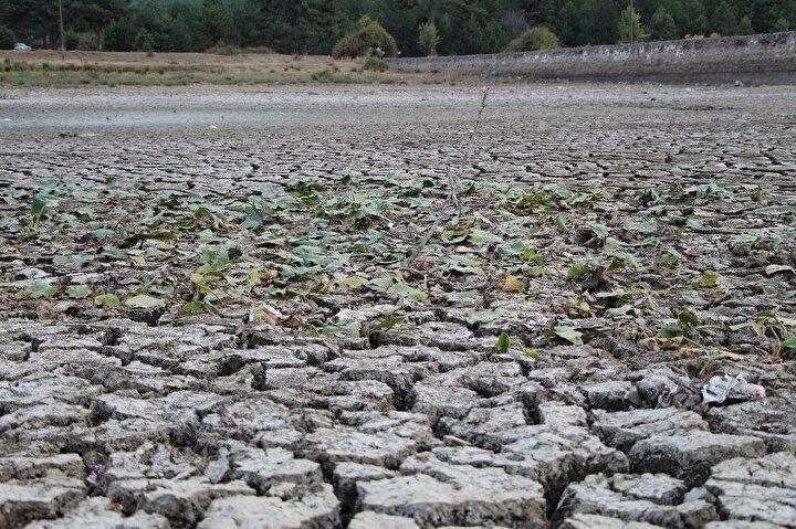 Gölde sular çekildikçe ziyaretçiler tarafından göle atılan çöpler gün yüzüne çıktı.