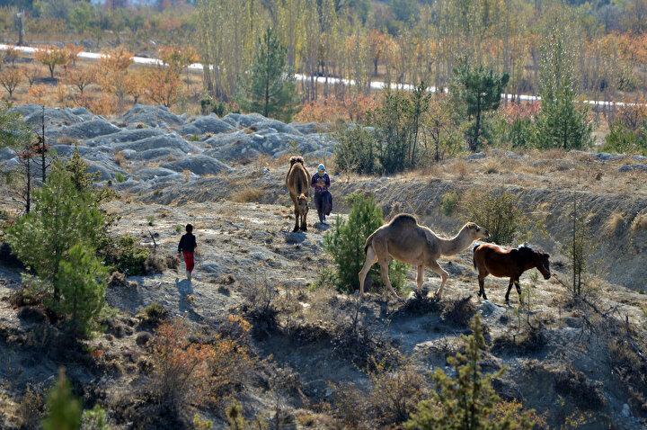 Zorlu yolculuk öncesi evi bildikleri çadırları söken, yufka ekmek, peynir ve yoğurt hazırlayan Sarıkeçililer, eşyalarını yükledikleri develeri ve tek geçim kaynakları olan keçileriyle Torosların engebeli yollarını arşınlıyor.