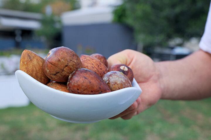 Ana vatanı Orta Meksika olan avokado, son yıllarda Türkiyede en çok tüketilen ve üretilen meyveler arasında yer aldı. Faydalı yağları ve yüksek protein barındıran avokado, Türkiyenin tropikal meyve bahçesi olarak adlandırılan Antalyanın Gazipaşa ve Alanya ilçelerinde çiftçilerden büyük ilgi gördü. Hem üretiminin zahmetsiz ve masrafsız oluşu hem de kolay pazar bulması açısından talep gören avokado, market rafları ve pazar tezgahlarında adedi en düşük 7 liradan alıcı buluyor.