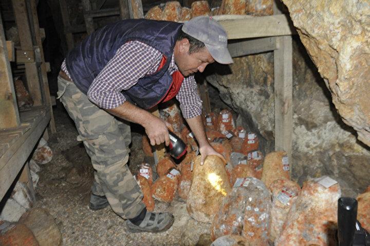 Ardından da 256 metre uzunluğunda, 36 metre derinliğindeki Divle Obruk Mağarasına konuyor.
