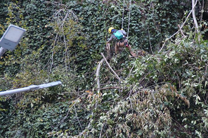 İlçenin kaya tehdidinden kurtarılması için karayolları ekipleri, yolu beton bariyerlerle çevirdi, özel dağcılar halatlarla tırmandıkları yamaçta riskli kayaları düşürmeye başladı. Kayaların düşürülmesi ile yamaç, çelik ağlarla örülecek. Çalışmanın tamamlanması ile ilçe kaya tehdidinden kurtulacak.