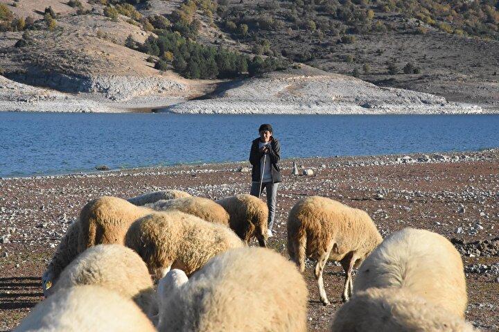Proje kapsamında kendisine hibe edilen 34 koyun ise Büyükköse'nin hayatını değiştirdi. Balıkçılığın yanında hayvancılık da yapmaya başlayan Büyükköse, koyunlardan doğan kuzuları satarak ev geçirmenin yanı sıra traktör alarak çiftçiliği de sürdürdü.