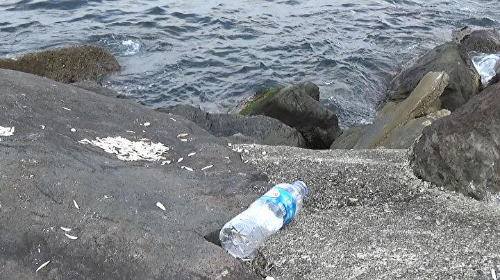 Doç. Dr. Erüz, Bunlar petrol türevi oldukları için, pet şişe ve plastik türevli mikrofiber dokunmuş malzemeler gibi yüzlerce yıl doğada parçalanmadan kalabilme özelliğine sahip. Parçalandıklarında da kimyasal olarak ayrışmıyor, fiziksel olarak parçalanarak mikrofiber dediğimiz mikroplastik ve nanopartikül şeklinde doğada yoğun şekilde yayılarak kalacaklar. Küçük organizmadan insana doğru giden bir sistemin içerisine dahil olacaklar. Basından öğrendiğimize göre Türkiyede günde 70 milyon civarında maske tüketiliyor. Bu inanılmaz bir rakam. Biz daha önceden atık kirliliği konusunda en büyük problemi pet şişeler ve plastik poşetler olarak görüyorduk. Çünkü gördüğümüz, geri dönüştürülmeden doğaya atılan en yüksek oranda katı atık pet şişeler ve plastik poşetlerdi. Şimdiyse insanların dolaştıkları her yerde maskeler doğaya atılmış şekilde bulunmaya başlandı dedi.