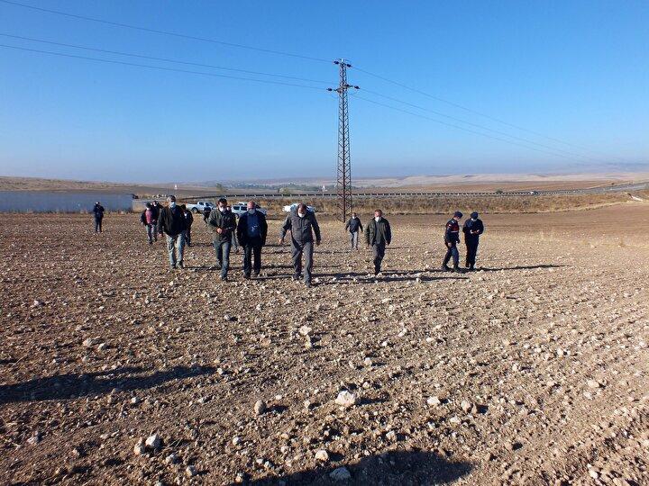 Bunun üzerine kuşun vurularak ölüsünün toprağa gömüldüğü iddia edilen Sorguna bağlı Osmaniye köyü kırsalında jandarma tarafından arama çalışması başlatıldı. Avcılar ve köylüler de arama çalışmalarına katıldı. Kuşun gömüldüğü ileri sürülen bölgede geniş bir alan karış karış tarandı. Dronla havadan da desteklenen çalışma sırasında şüpheli alanlarda toprak kazıldı, inceleme yapıldı. Ancak yakalı toydan herhangi bir ize rastlanmadı.