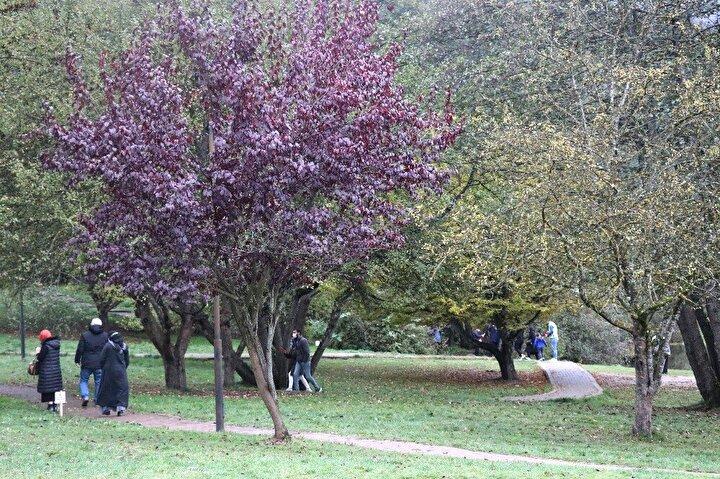 Bolunun gözde turizm merkezlerinden olan ve şehrin incisi olarak tabir edilen Gölcük Tabiat Parkı, sonbaharın tadını yeşillikler içinde geçirmek isteyen tatilcilerin akınına uğradı.