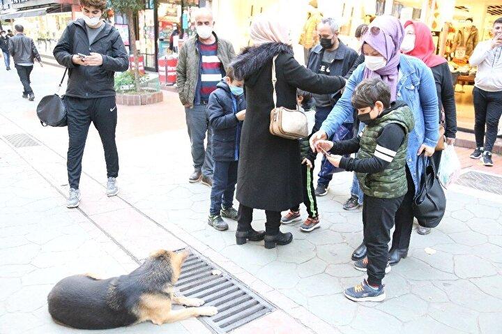 """Köpeğin bir travma geçirmediğini yağmur nedeniyle rögarlardan çıkan fareleri kovalaması sonucu mazgal başında beklemeyi alışkanlık haline getirdiğini söyleyen Fethiye Caddesi esnaflarından Taner Savder, """"Biz burada esnafız. Bundan 20-25 gün önce aşırı yağmur yağmıştı. Rögarlardan gelen sudan dolayı fareler çıktı birkaç tane burada. Fareleri kovalayınca otomatikman hayvanda bir his oluştu. Acaba tekrar fare mi çıkacak. Biz de bunu birkaç sefer söyledik. Sosyal medyada da duyduk. Yok bir travma mı geçiriyor. Öyle bir şey yok. Fareden dolayı tamamen. Fareyi kovaladığı için devamlı mazgalları geze geze bakıyor. Onun haricinde herhangi bir sıkıntı olduğunu düşünmüyoruz köpekte. Çok seviyoruz ve besliyoruz burada esnaf olarak. Ünlü oldu herkes gelip çekmeye başladı. Yavrusunu düşürmüş ya da düşürdü. Öyle bir şey yok. Buradan herkese söyleyelim"""" dedi."""