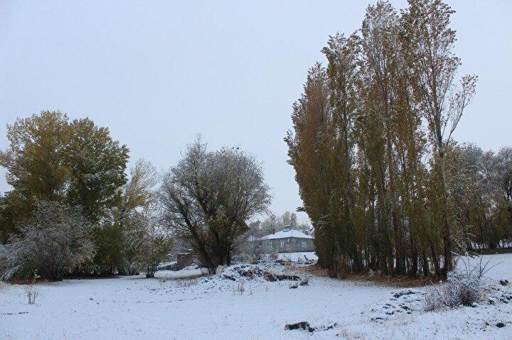 Yeşilimsi ve sarımtrak renklere sahip olan ağaçların üzerine yağan kar, ortaya renkli görüntüler çıkardı.