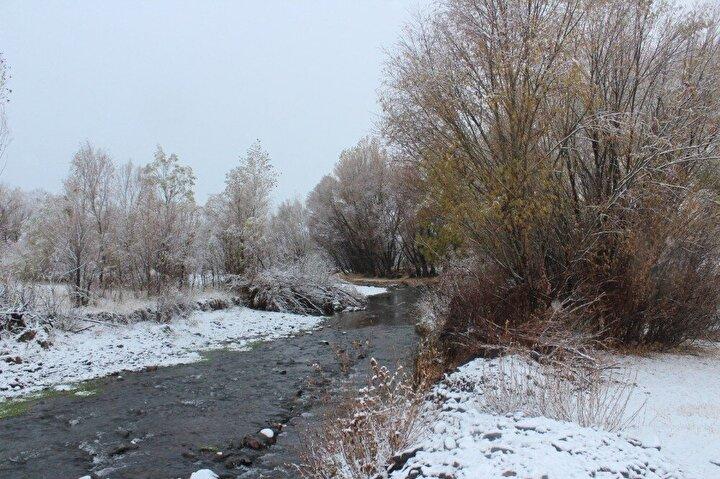 Havaların soğumasıyla birlikte Ağrı merkeze yaklaşık 30 kilometre uzaklıkta bulunan Balıksu Köyü'nde etkili olan kar yağışı, özellikle ağaçlık alanlarda kartpostallık görüntülere sahne oldu.