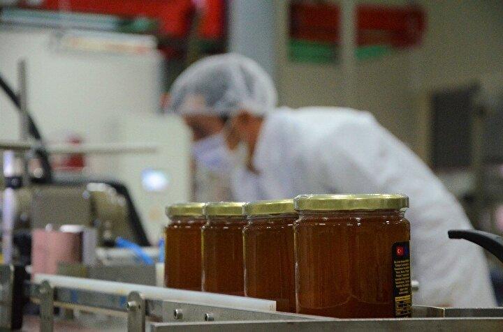 2008 yılında projelendirilen, 2011 yılında temelleri atılan, 2018 yılında da hizmete açılan Ordu Arıcılık Araştırma Enstitüsü bünyesinde kurulan bal paketleme tesisi ve analiz laboratuvarı sahte balın engellenmesinde büyük rol üstlenecek.