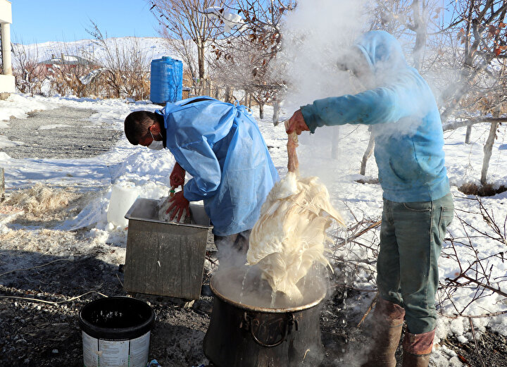 Hijyen kurallarına uyarak kestikleri kazların etini 45 derecelik su kazanlarına alan girişimci kardeşler, daha sonra makinelerle tüylerini temizliyor.