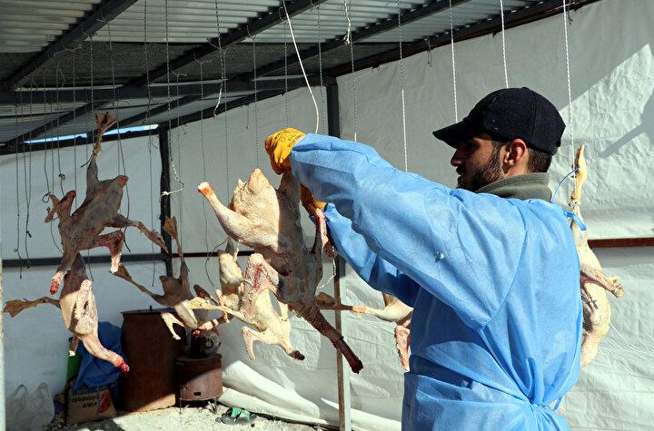 Çiftlikte 700 damızlık kaz ile 2 bin civciv yetiştirdiklerini anlatan Muhammed Kasap, gelen talepleri yetiştirmeye çalıştıklarını söyledi.