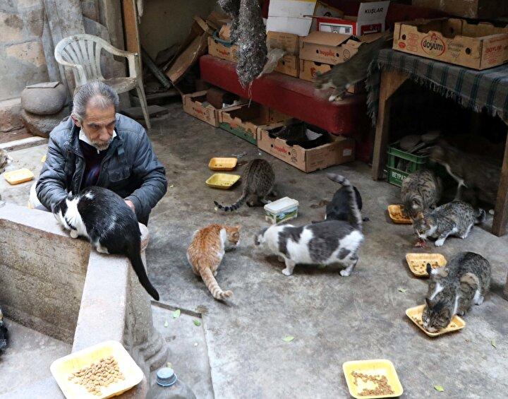 Sokak hayvanlarının her zaman mama sıkıntısı çektiğini ve bu sıkıntının kış mevsiminde daha çok artığını belirten Salgar, Yaklaşık 10 yıldır sahiplendiğim kedilere ve sokak hayvanlarına bakıyorum ve her geçen gün sayı artıyor. Bunlar sokak hayvanları olduğu için yem bulamıyorlar. Kimisi çatıya, kimisi evin avlusuna geliyor. Yemiyorum içmiyorum kedilerime bakıyorum. Hayvanlara karşı biraz duyarlı olalım. Eskiden hurdacılık yapıyordum ve bu evi almaya çalıştım. Ama evi almayıp, parayı kedilere harcadım. Ben kirada kalabilirim ama bu kediler aç kalamaz. Elimden geldikçe yemeklerini temin ediyorum. Ama kedilerin sayısı doğum yaptıkça ve çevreden yeni kedilerin gelmesiyle sayı artıyor dedi.