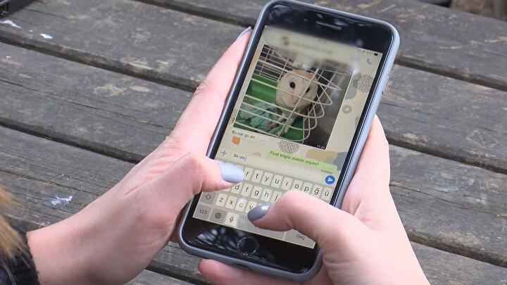 İnsanların bu hayvanların satışına talep oluşturmaması gerektiğini vurgulayan WWF-Türkiye (Doğal Hayatı Koruma Vakfı) Yaban Hayatı Kıdemli Uzmanı Ahmet Emre Kütükçü, Online platformlarda, özellikle sahiplendirme siteleri, ilan siteleri ya da sosyal medya hesaplarından yıl boyunca bu tür hayvanların satışı ile ilgili çok fazla duyum, ihbar paylaşılıyor ve şikayet ediliyor.