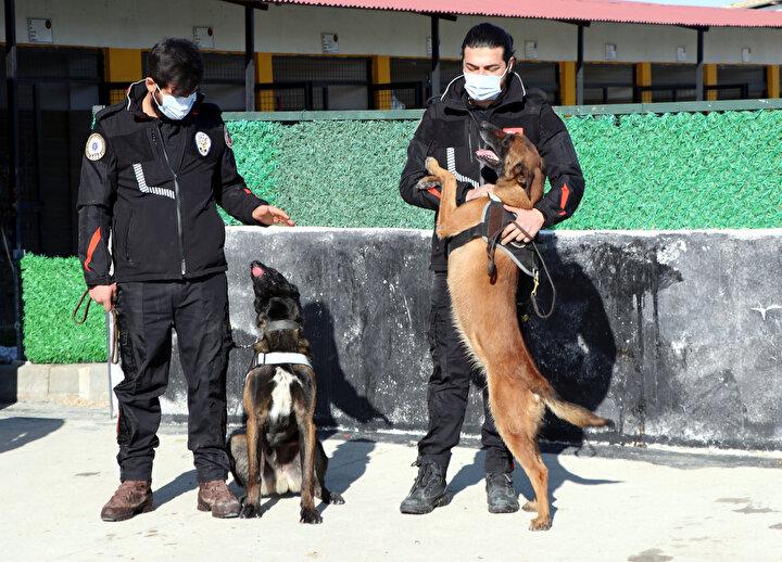 Van Emniyet Müdürlüğü Narkotik Suçlarla Mücadele Şubesi ekiplerinin çalışmaları kapsamındaki operasyon ve polis kontrol noktalarında yapılan aramalarda, bu yıl da özellikle eroin bulunmasında Türkiye rekoru kırıldı.