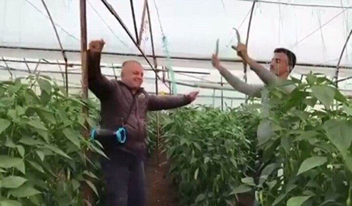 Diğer işçiler sera içinde biber hasadı yaparken iki çiftçi el radyosundan açtıkları oyun havası eşliğinde oynadı.