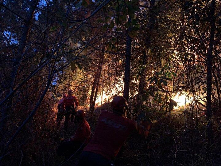 Trabzon, Rize, Artvin ve Ordu bugün 23 farklı noktada yangınlar çıktı. Orman Bölge Müdürlüklerine bağlı ekiplerin yanı sıra belediye itfaiye ekiplerinin de müdahale ettiği yangınlardan bazıları söndürüldü. Ekipler yangınların devam ettiği 8 noktada alevlere müdahale ediyor.