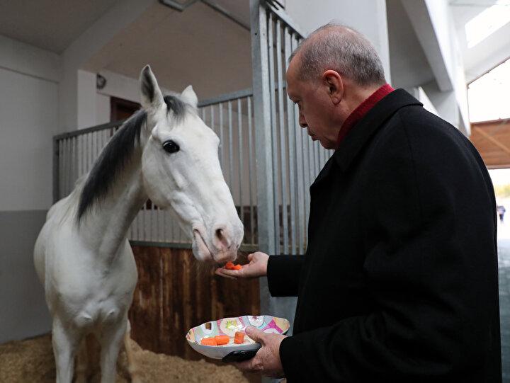 Ankara Geleneksel Sporlar Tesisi açılışına katılan Cumhurbaşkanı Recep Tayyip Erdoğan, açılış sonrası tesiste incelemelerde bulundu.