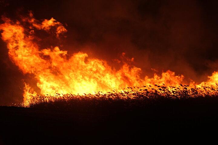 Bayındır, gazetecilere yaptığı açıklamada, yangının kontrol altına alındığını belirterek şunları kaydetti:Rüzgarın yönünü değiştirmesi ihtimaline karşı ekiplerin bölgedeki bekleyişi sürüyor. Yangının çıkış nedeniyle ilgili çalışmalar devam ediyor. Rüzgar ters esseydi arkadaki ormana da yazık olacaktı. Allaha şükür kontrol altına aldık. İnşallah bir daha bu gibi durumlarla karşılaşmayız.