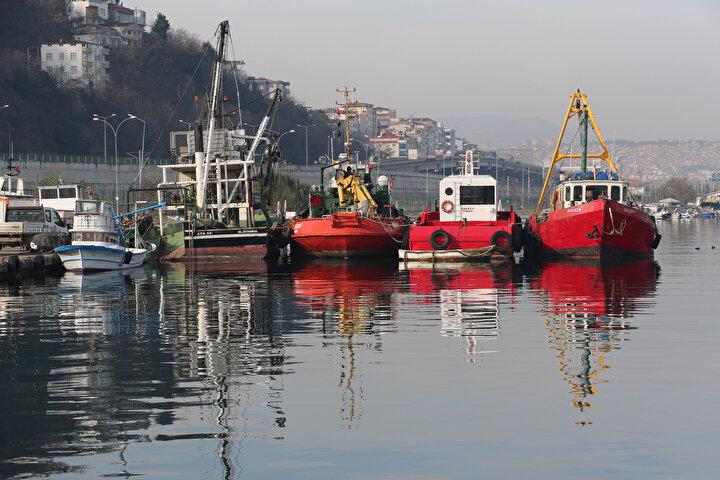 Karadenizde hava sıcaklıklarının mevsim normallerinin üzerinde seyretmesi ile deniz suyu sıcaklığının düşmemesi balıkların göç yollarını da etkiledi. Deniz suyu sıcaklığının Bulgaristan tarafında 9-10 derece, Gürcistan tarafında 12 derece, Samsun çevresinde ise 13-14 derece civarında olması balık sürülerinin doğu yerine daha soğuk olan batıya göç etmesine neden oluyor.