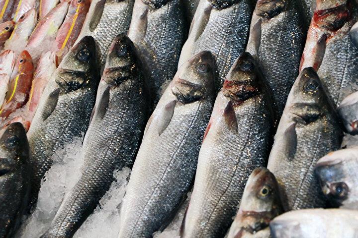 """Balığın tazeliğinin deri ve göz parlaklığıyla da anlaşıldığını kaydeden Kılıç, taze balığı anlamanın püf noktasına değinerek, """"Balık derisine elinizle bastırdığınızda balık çöküp geri düzelmiyorsa bayattır. Eğer elinizi çektiğinizde düzeliyorsa tazedir. Bunun yanı sıra 3'üncü günü geçen ve gözleri solmaya başlayan balığı karbonat ve tuzlu suya sokup şokladıktan sonra tekrar parlak hale getirenler de varmış. İşin kısası bu kişilerin sayısı az olsa da var. İnsanlar ya balığı çok iyi bilecekler ya da balıkçılarını çok iyi tanıyacaklar"""" diye konuştu."""