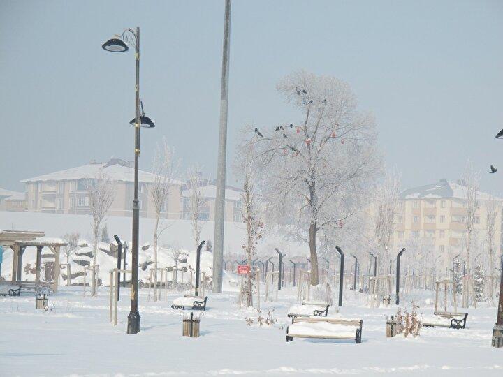 Öte yandan dün gecenin en soğuk kenti Ağrı ve bazı ilçelerinde en düşük hava sıcaklığının sıfırın altında 30 dereceyi geçmesi nedeniyle her taraf buz tuttu. Sabah saatlerinde iş yerine gitmek üzere evlerinden çıkanların kaş ve kirpikleri buz tuttu. Taşlıçay Deresinin buz tuttuğu Ağrıda ağaçlar üzerinde kırağı oluştu.