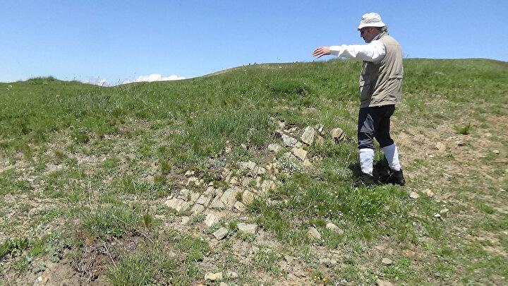 Fosil ağaçların 160 ile 170 milyon yıllar arasındaki döneme ait olduğunu söyleyen Prof. Dr. Kandemir, Jura dediğiniz zaman insanların ilk aklına gelen Jurassic Park olabilir. Dinozorlarla birlikte aslında aynı zamanda yaşamış bitkilerin fosillerini burada bulabiliyoruz. Bu açıdan çok değerli ve kesinlikle koruma altına alınması gerekiyor. Sadece fosiller açısından bile baktığınız zaman, Gümüşhane ve Anadolu coğrafyasında 'Jura' yaşlı bu ağaç fosillerinin bulunduğu alanlar çok kısıtlı. Erzurum Oltu'da var, bir tane de Gümüşhane'de var. Gümüşhane'deki de çok ciddi büyük yapılarda yaklaşık 1 metre çapına ulaşan fosil ağaçları bulabiliyoruz. O yüzden değerli bir bölge. Hem göller açısından rekreasyon anlamında düzenlemeler yapılabilir hem de fosiller açısından yer bilimleri farkındalığını artırmak anlamında bu bölgenin kesinlikle korumaya alınarak bölge turizmine kazandırılması gerekiyor diye konuştu.