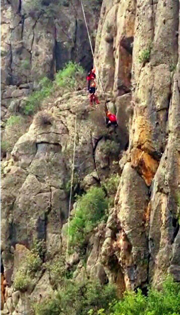 Olay, Serik ilçesine bağlı Karataş köyünde meydana geldi. Edinilen bilgiye göre, Şaban Çıkla isimli vatandaşa ait olduğu öğrenilen keçi, otlandığı sırada dengesini kaybederek 130 metre yüksekliğindeki uçuruma düştü.
