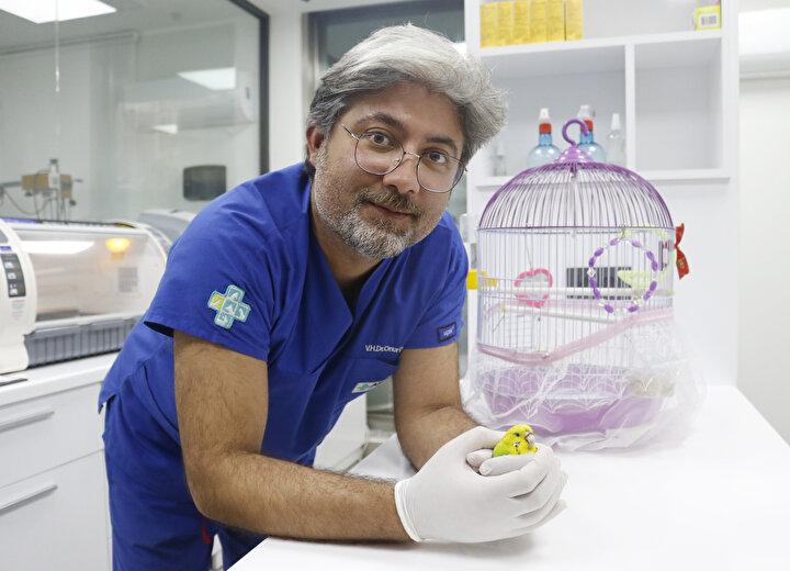 9 Eylül Üniversitesi Sosyoloji bölümünde okuyan Helen Sanem Gültekin, uzaktan eğitim nedeniyle Antalyadayken Cevriye adını verdiği muhabbet kuşu, burnundan rahatsızlandı. Gagası kanayan, papağan kuş türlerinden, ortalama yaşam süresi 10 yıl olan kuşa, kanser teşhisi konuldu. Yavruyken aldığı Cevriyenin bu durumuna üzülen ve kuşunu Konyaaltı ilçesindeki bir veteriner kliniğine getiren Gültekin, Tümörü vardı bir gece tümörü patladı, çok yoğun kanama oldu. Ameliyat yapılamayacağı söylendi. 20 gramlık hayvan. Bir akşam gagası düştü. Biz de veterinere uyutulması için geldik dedi.