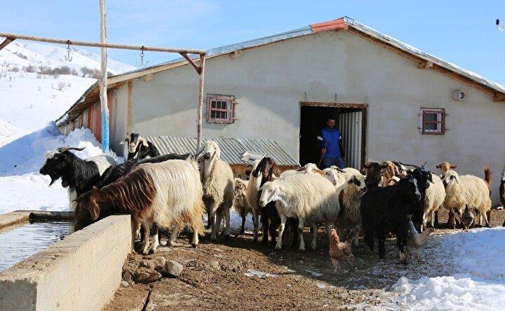Gençlere köyünüze dönün çağrısı  Köy hayatının son derece güzel geçtiğini kaydeden Serdar Eroğlu, gençlere de köylerine dönme çağrısında bulundu.