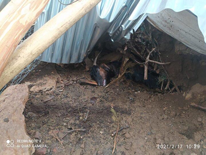 Fırtınanın kopardığı iletim hatları nedeniyle ilçenin birçok köyüne elektrik verilemediği, ekiplerin meydana gelen arızaları onarmak için yoğun çalışma başlattıkları belirtildi.