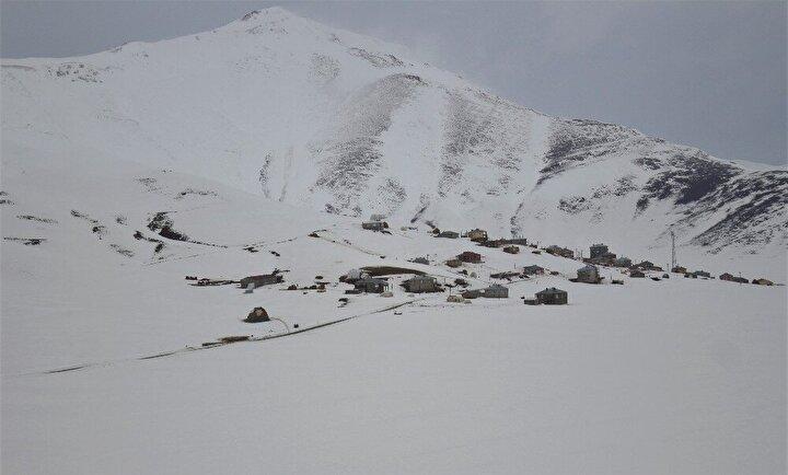 Yoğun kar nedeniyle araçlarla ilerleyemeyen aşı ekibi, fırtına ve dondurucu soğuğa aldırış etmeden yürüyerek yaşlılara ulaşmaya çalışıyor.