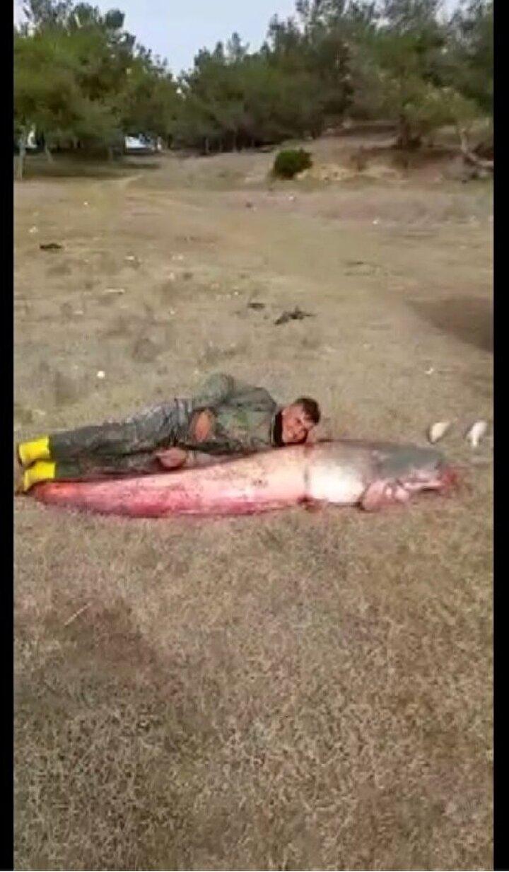 Ağlarına takılan balığın, 2,5 metre boyunda, 77 kilo ağırlığında yayın balığı olduğunu fark eden balıkçılar hem sevinç hem de şaşkınlık yaşadı.