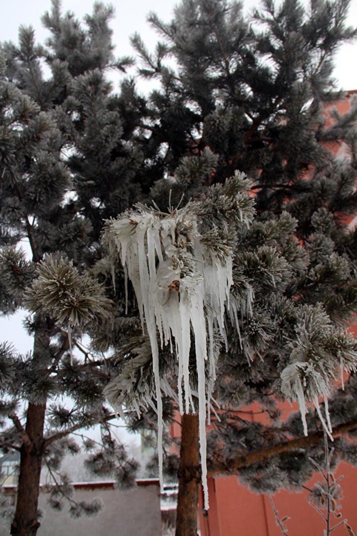 Yapılan ölçümlere göre, ilde en soğuk yerleşim birimi, sıfırın altında 28 derece ile Göle ilçesi oldu.