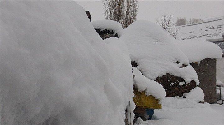 """Erzurum Teknik Üniversitesi Makine Mühendisliği 4üncü sınıf öğrencisi Zafer Güvercin de babasına yardım ederek ot taşıyıp, hayvanları besliyor ve kar yağdığında da bacalarda kar kürüyor. Zafer Güvercin, """"Pandemiden dolayı köydeyim. Babama yardımcı oluyorum. Hayatımız öyle karla kışla devam ediyor diye konuştu."""