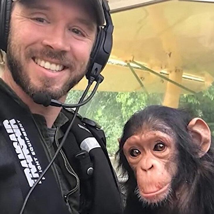 Kaçak avcılardan kurtarılan yavru şempanzenin uçuş keyfi