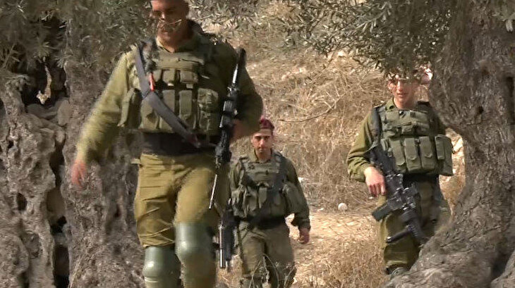 Zeytin hasadını yapan Filistinli çiftçiler, Yahudilerin yağmalamasından tedirgin