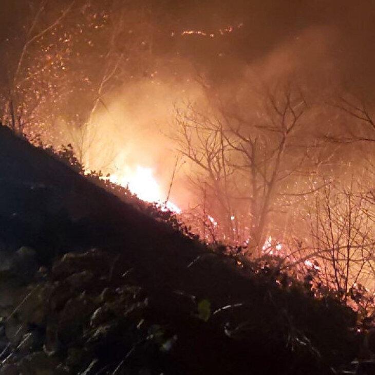 Karadeniz'de 26 noktada yangın çıktı, tarım arazileri zarar gördü