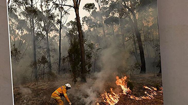 Avustralya'daki yangınlar nasıl çıktı?