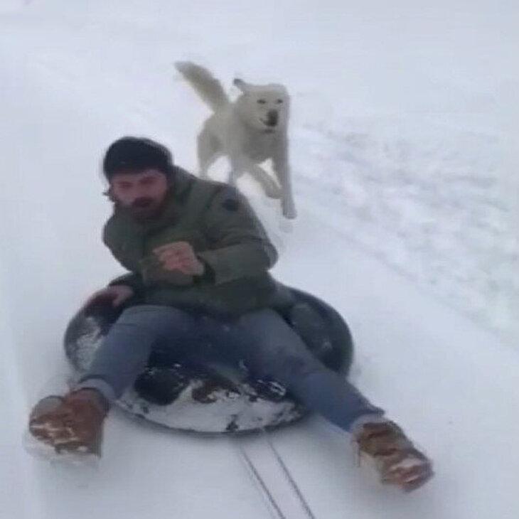 Karda eğlenmek isterken peşine köpek takıldı
