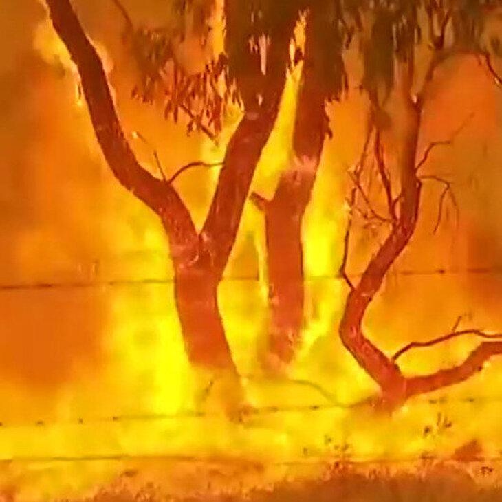 Avustralya'da yangınlar nedeniyle vatandaşlara sığınaklara gitme çağrısı