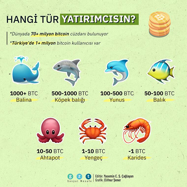 Bitcoin yatırımcıları ellerindeki miktara göre isimlendiriliyor