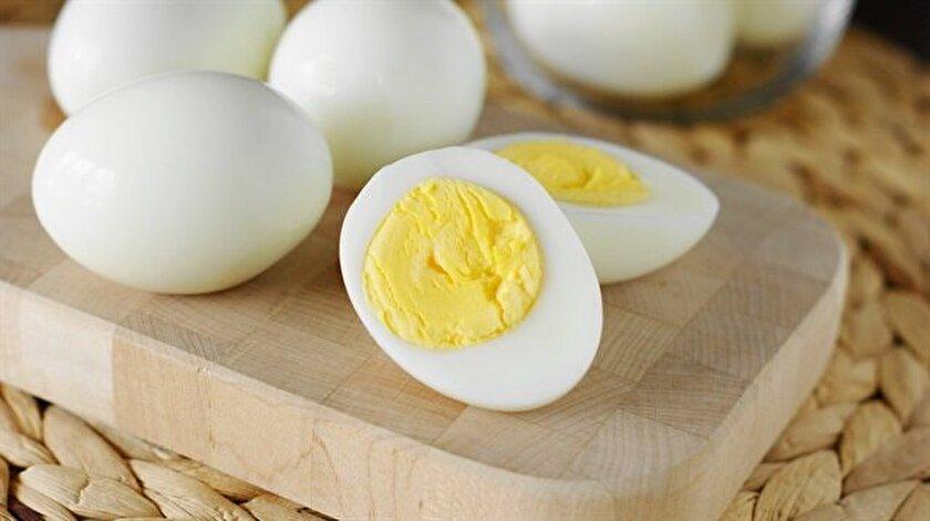Yumurta Hakkinda Bilmediginiz Hersey