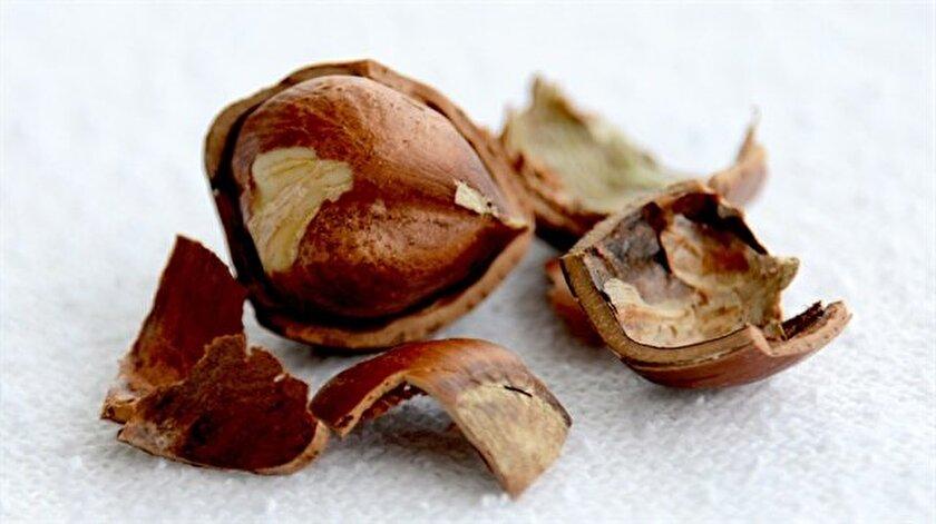 Kalp-damar hastalıklarını önleyen fındık, doğru oranad tüketildiğinde kişinin günlük E vitamini ihtiyacını da karşılayabiliyor.