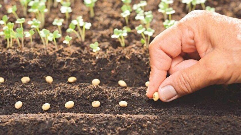 'Tohumculuk Sektöründe Yeni Yaklaşımlar' paneli düzenlendi.