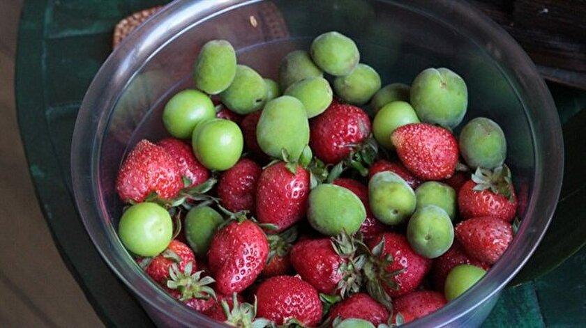 Bahar aylarında tezgahları süsleyen mevsim meyveleri yorgunluğu alıyor.